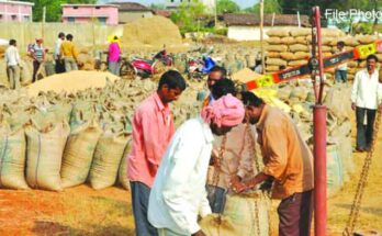 62 lakh metric tonnes of paddy purchased till January 7 in the state: 15.49 lakh farmers sold paddy in the state